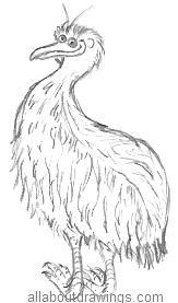 Cartoon Emu