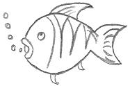 Cartoon Fish Drawings