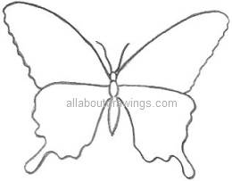 Butterfly Outline