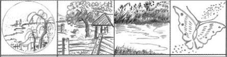 Thumbnail Drawings 3