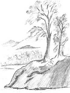 Black and White Drawing Landscape