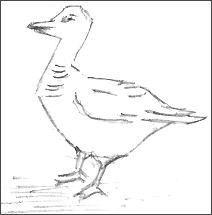 Blocking In A Duck