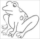 Cartoon Frog Drawings