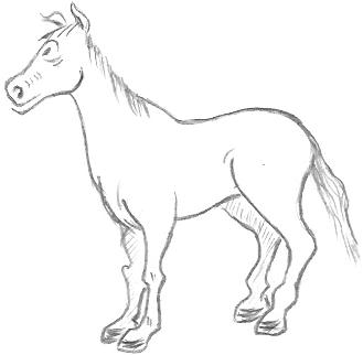 Cartoon Horse Drawings