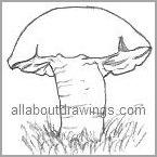 Cartoon Mushroom Outline