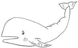 Cartoon Whale Drawing