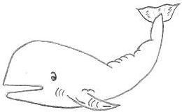 Cartoon Whale Drawing