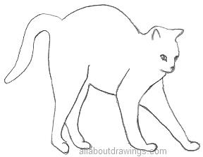Cat Stretching Drawing