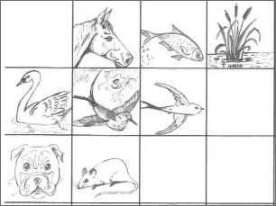 Drawing Thumbnails