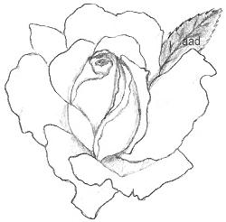 Drawing Of A Rosebud