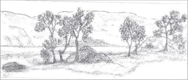 Easy landscape sketch