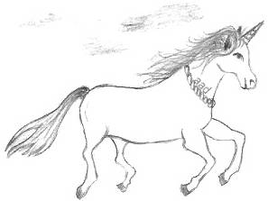 Fantasy Horse Drawings