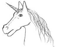 Fantasy Horse Head Drawing