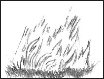 Flames Fire Drawing