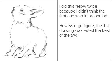Sketch of a Bunny