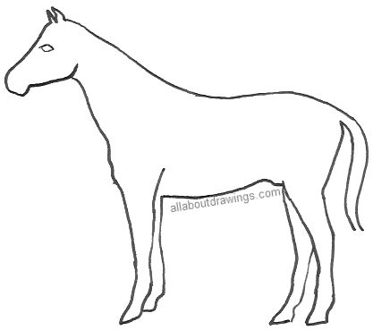 Simple pencil horse drawings