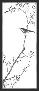 Japanese Bird Drawing