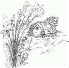 Landscape Flowers Sketch