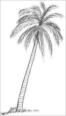palm beach gardens black single men Palm beach gardens (561) 842-7100  etonic for men etonic g-sok golf shoes – black price $ 4999 total $ 4999 add to cart quick view.