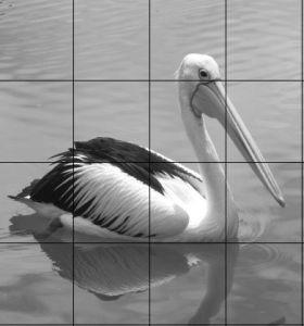 Pelican Grid