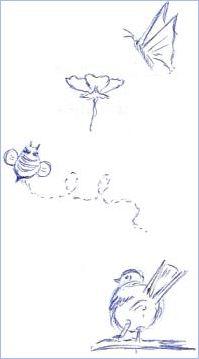 Pen Drawing Nature