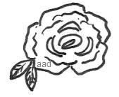 Ink Rose Sketch