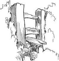 Fence Sketch
