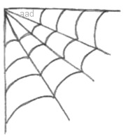 Spider Web In a Corner Drawing
