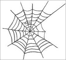 Spider Web Drawings