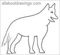 Outline Of A Wolf
