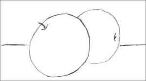 Line Drawing Apples