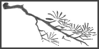 Japanese Branch Drawing